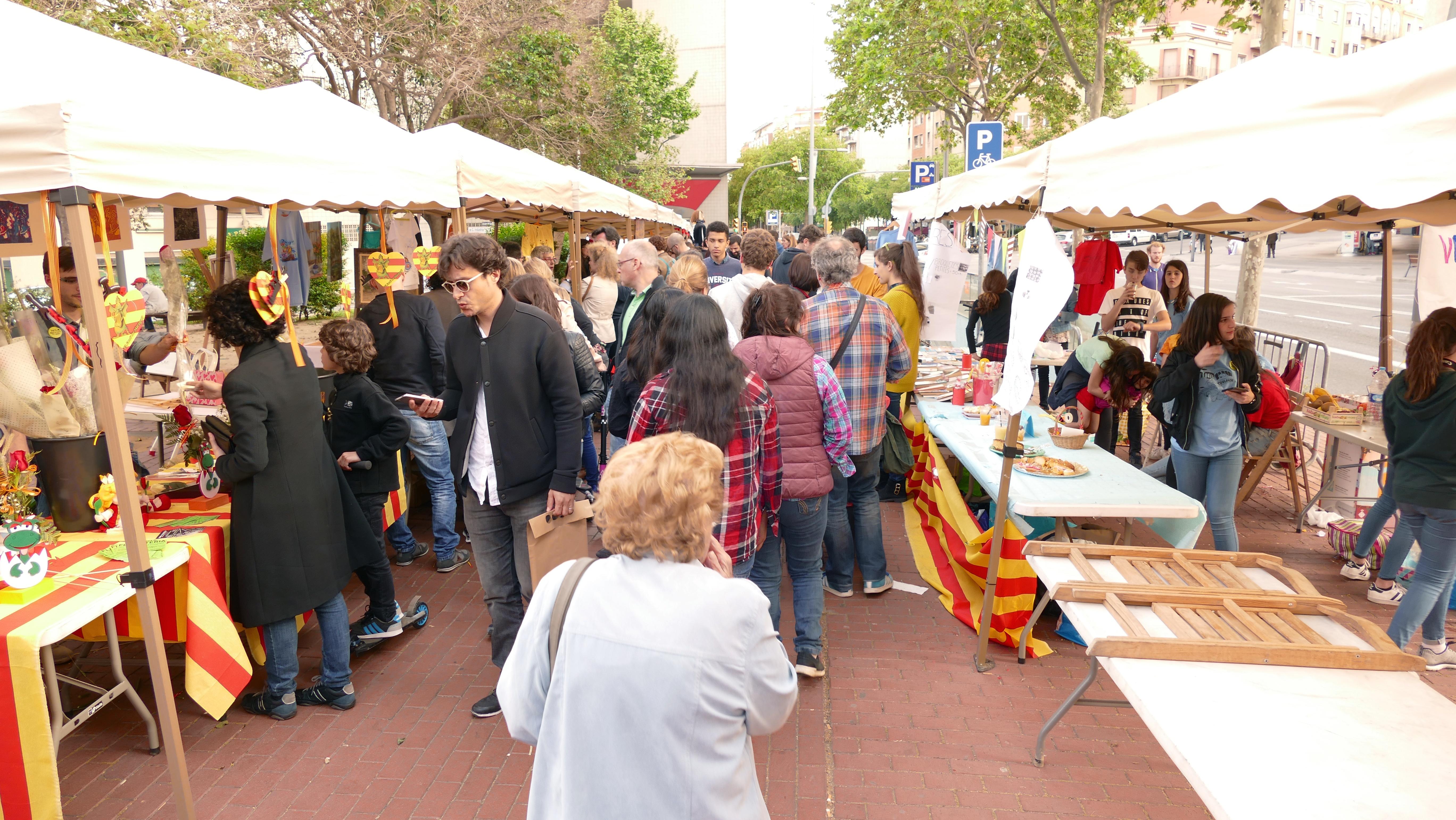 Sant Jordi Cultural